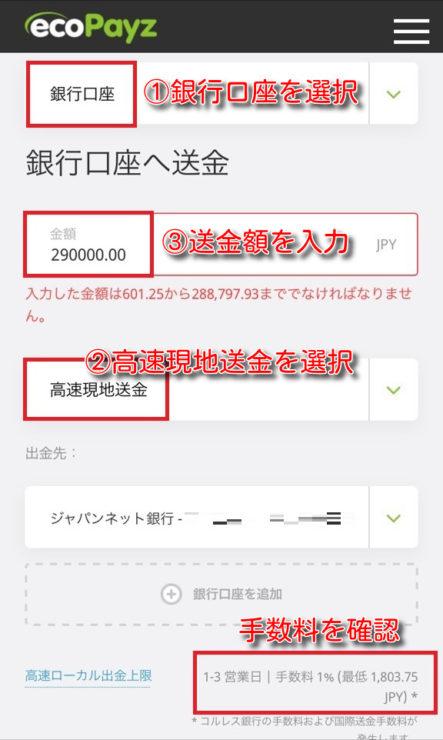 ecopayz money transfer18