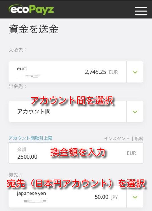 ecopayz money transfer2