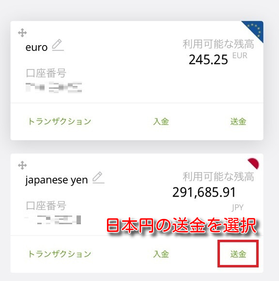 ecopayz money transfer9