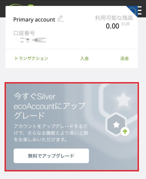 ecopayz silver1