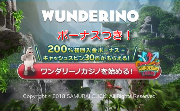 wunderino signup1