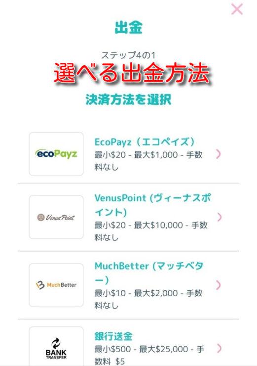 manekichi ecopayz deposit10