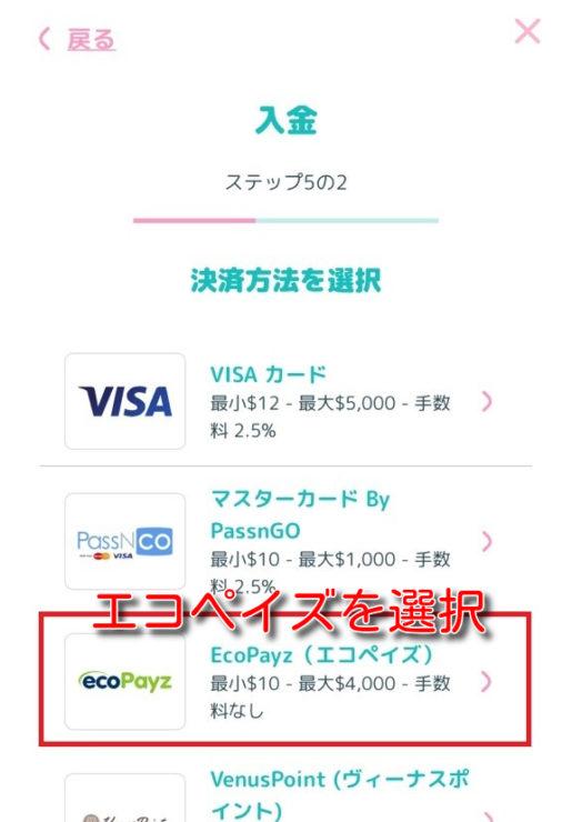manekichi ecopayz deposit3