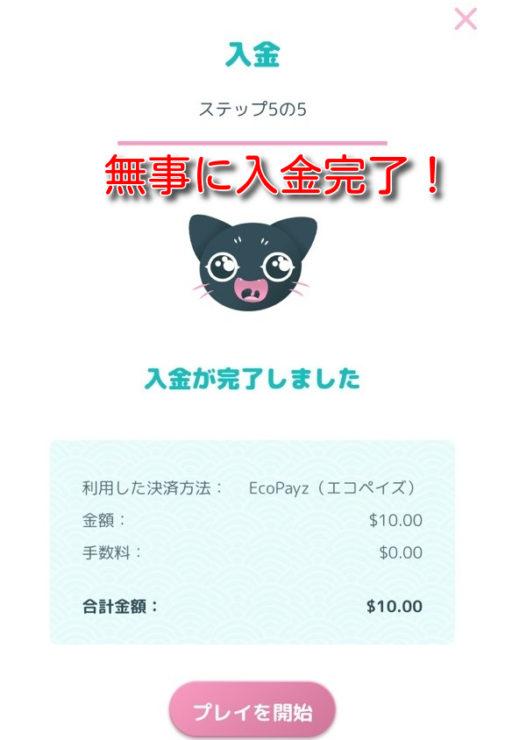 manekichi ecopayz deposit9
