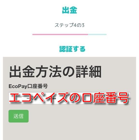 manekichi ecopayz withdrawal6