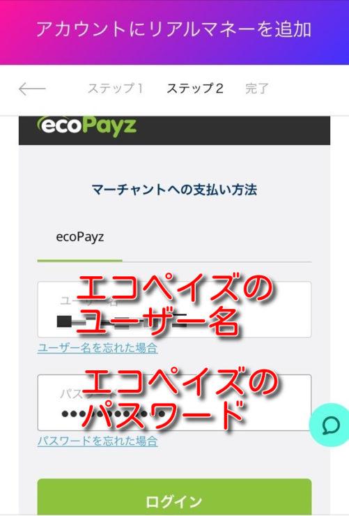 21.COM ecopayz deposit5