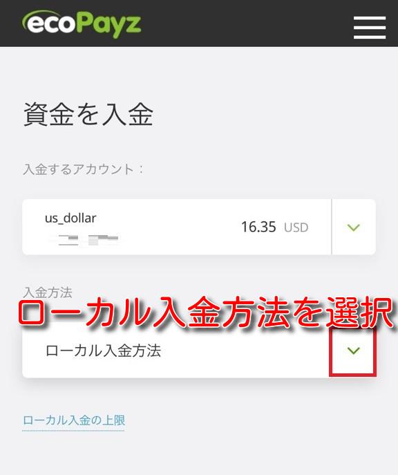 ecopayz deposit banktransfer2