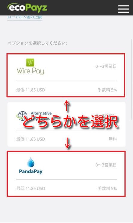 ecopayz deposit banktransfer3