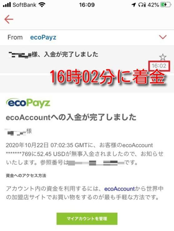 ecopayz deposit banktransfer9