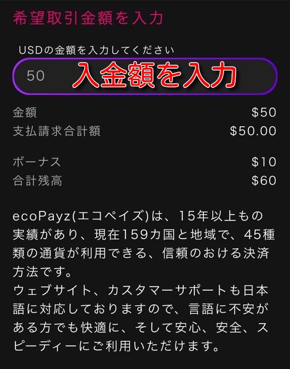 intercasino ecopayz deposit4