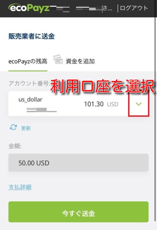 intercasino ecopayz deposit8