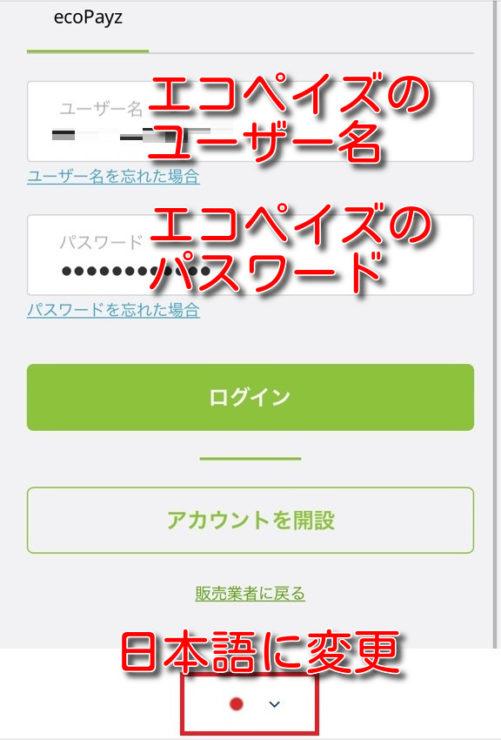 onlinecasino ecopayz deposit1