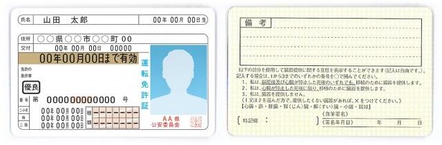 mystino-driver-license