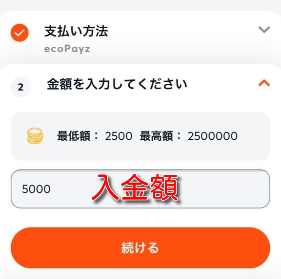 bitcasino ecopayz deposit4