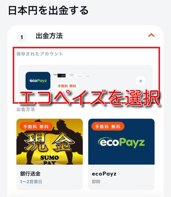 bitcasino ecopayz withdrawal3