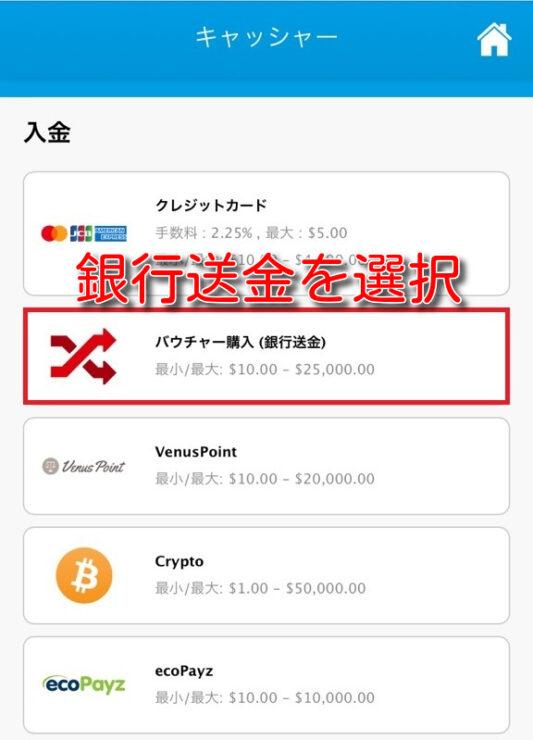verajohn-bank-transfer-deposit2