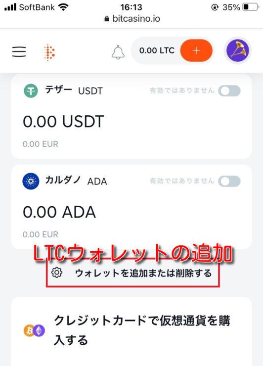 bitcasino-litecoin-deposit3