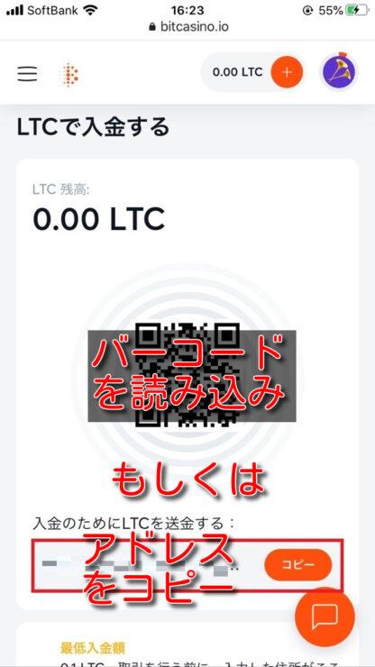 bitcasino-litecoin-deposit4